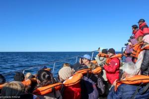 Puerto Madryn de la mano de Intertours