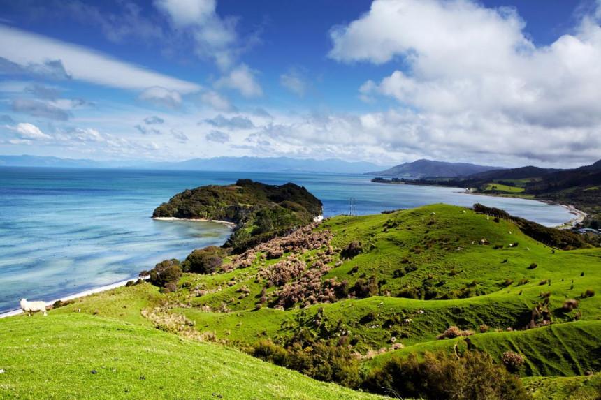 Rigurosidad en extremo: Nueva Zelanda cierra el país por un caso de COVID-19