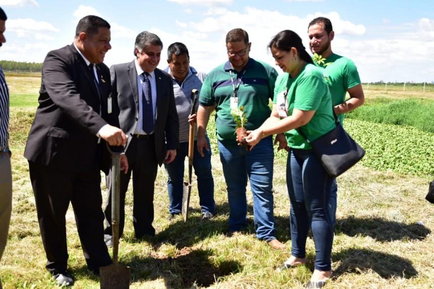 Lanzan proyecto de arborización en el aeropuerto Silvio Pettirossi