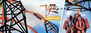 Tigris, la nueva propuesta salvaje de Busch Gardens