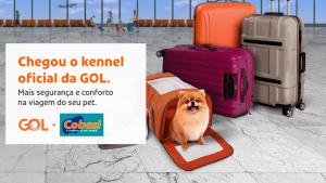 GOL lanza exclusiva caja de transporte para mascotas