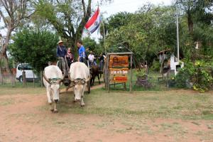 Comienza a tejerse el circuito turístico del Ñandutí