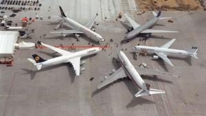 Miembros de la Star Alliance operarán en una misma terminal