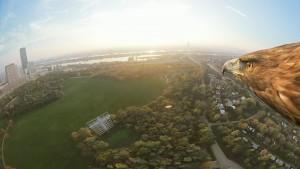 Emplean águilas para grabar vistas panorámicas de Viena