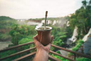 """El Parque Nacional Iguazú abrirá como """"prueba piloto"""" para la reactivación del turismo interno"""