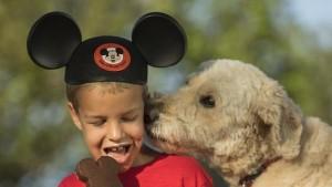 Perros también podrán alojarse en hoteles de Disney